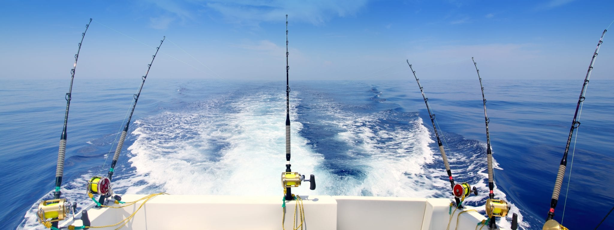 panama sport fishing vacation