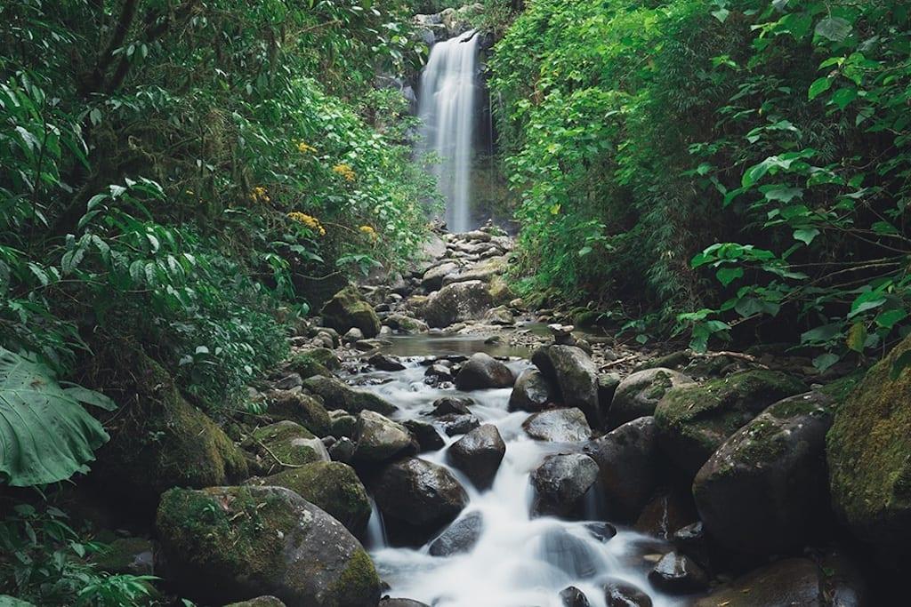 Visit Panama Boquete